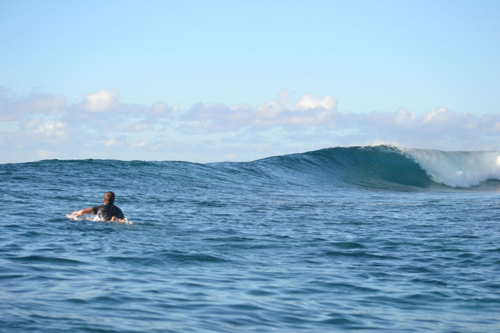 Surfing Tours & Charters