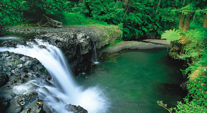 Hiking tours Samoa, waterfall tours, tourist things